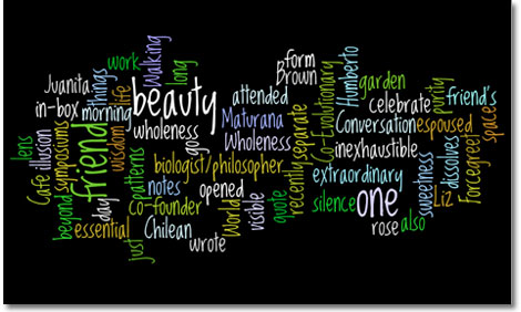 Beautywordle