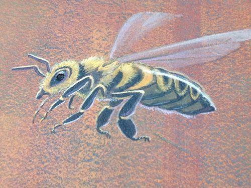Mural-bee